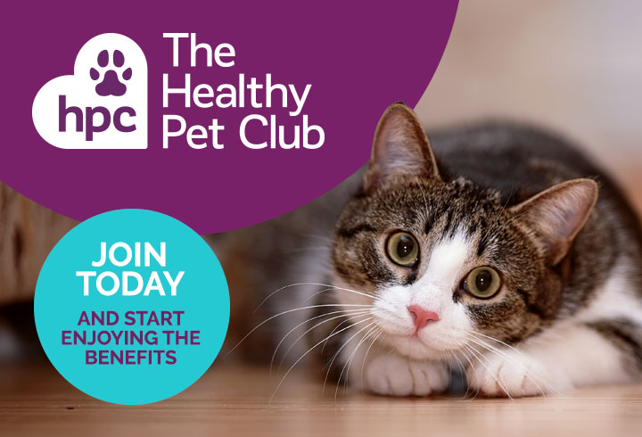 Join the Health Pet Club today
